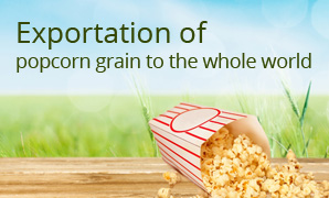 Exportation of popcorn grain to the whole world